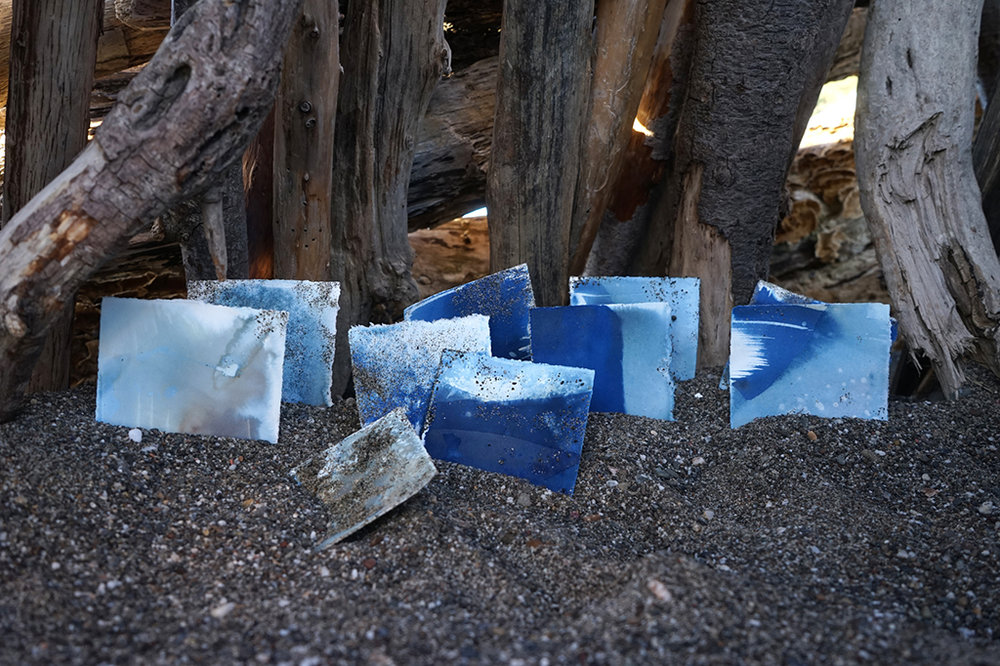 Collection of cyanotypes on the beach.