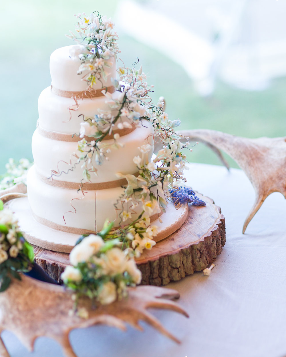 wedding photography cake-1-11.jpg