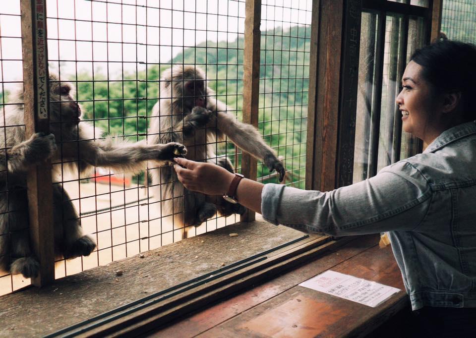 Arashiyama - Monkey Park