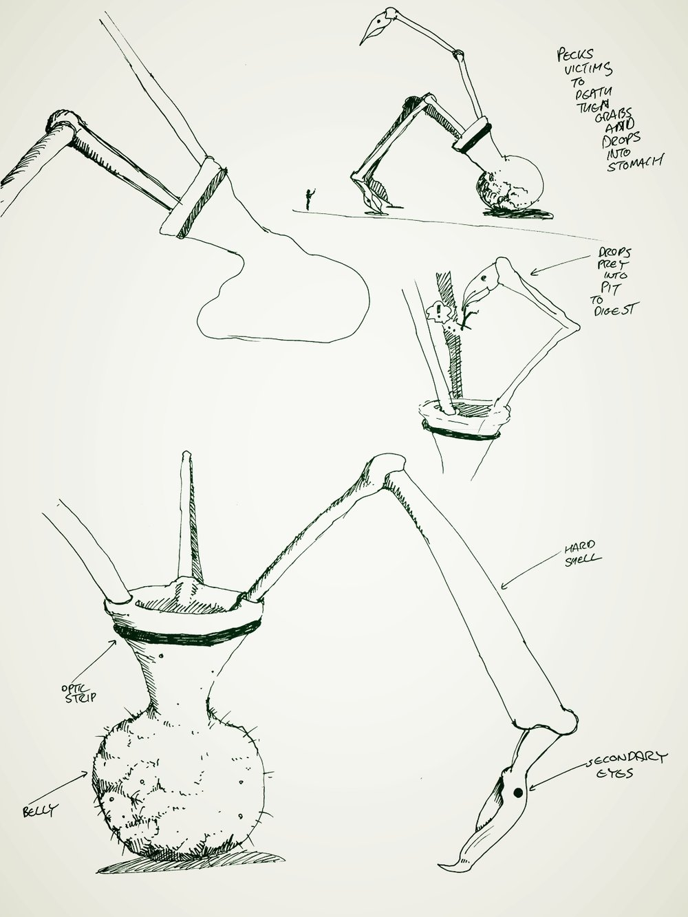 This vase-shaped tripod walks around on three beaks, and throws prey into its acidic open stomach at its centre.