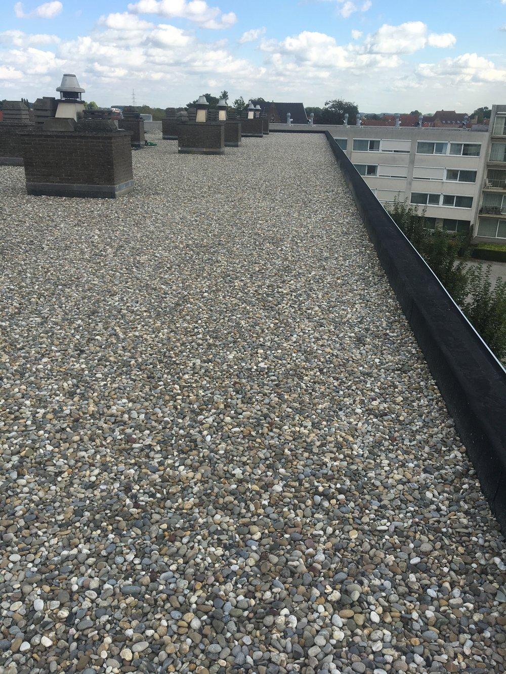 Dakwerken platte daken Brugge.jpg
