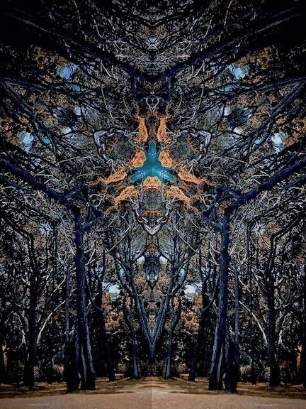 41ceed160460-Avatar_of_Creation_Mental_Demons_IMG_4147.jpg