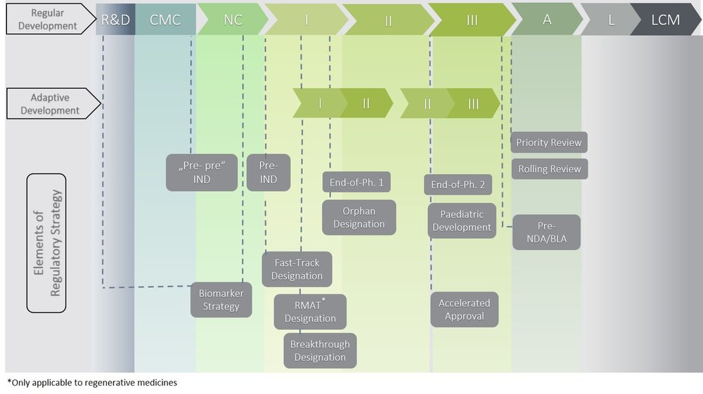 Figure          SEQ Figure \* ARABIC      1      :Regulatory tools to consider and integrate into overall US development strategy
