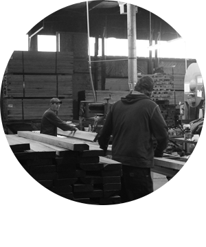 Workforce Development: Men working with wood in warehouse