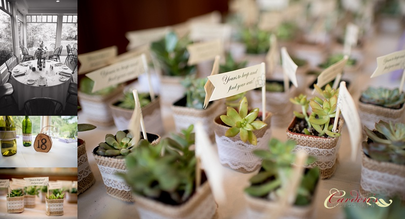 These succulents were such a cute favor and seat finder.