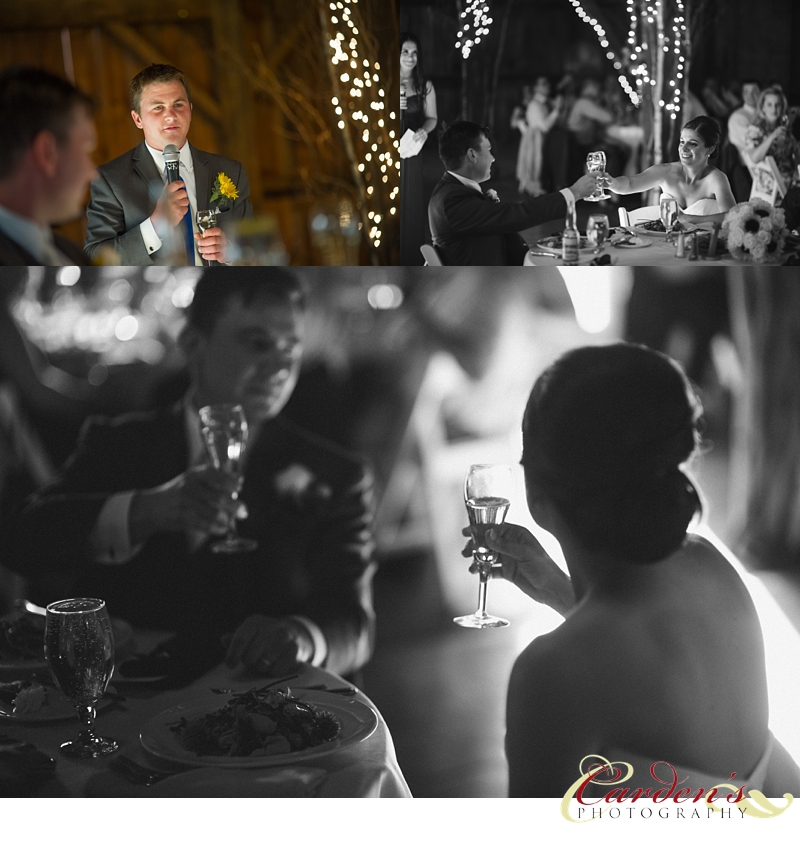 Friedman Farms Wedding Photographer Reception Toasts