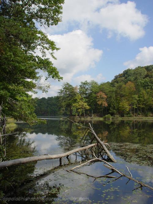 Chenoa Lake Bell County, KY