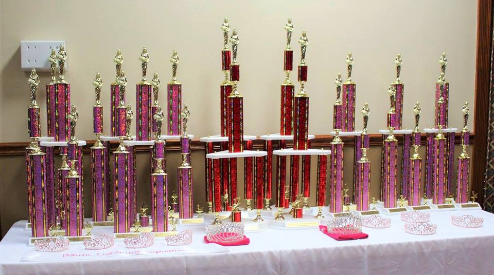 Tennessee Festival Pageant Association Member ALL winners will be qualified to attend the Tennessee Festival State Pageant!