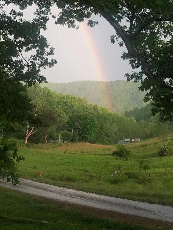 Friendly Farm   1104 Rebel Hollow Road, Tazewell, Tennessee 37879