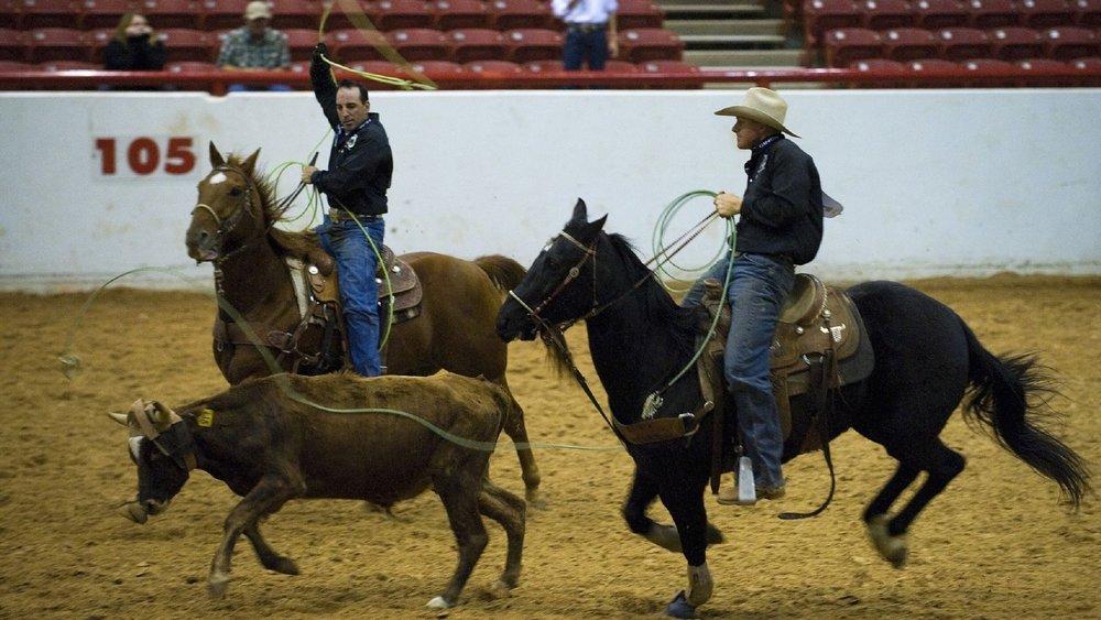 The Corbin Arena at The Southeastern KY Ag & Expo Complex  500 Arena Dr, Corbin, Kentucky 40701