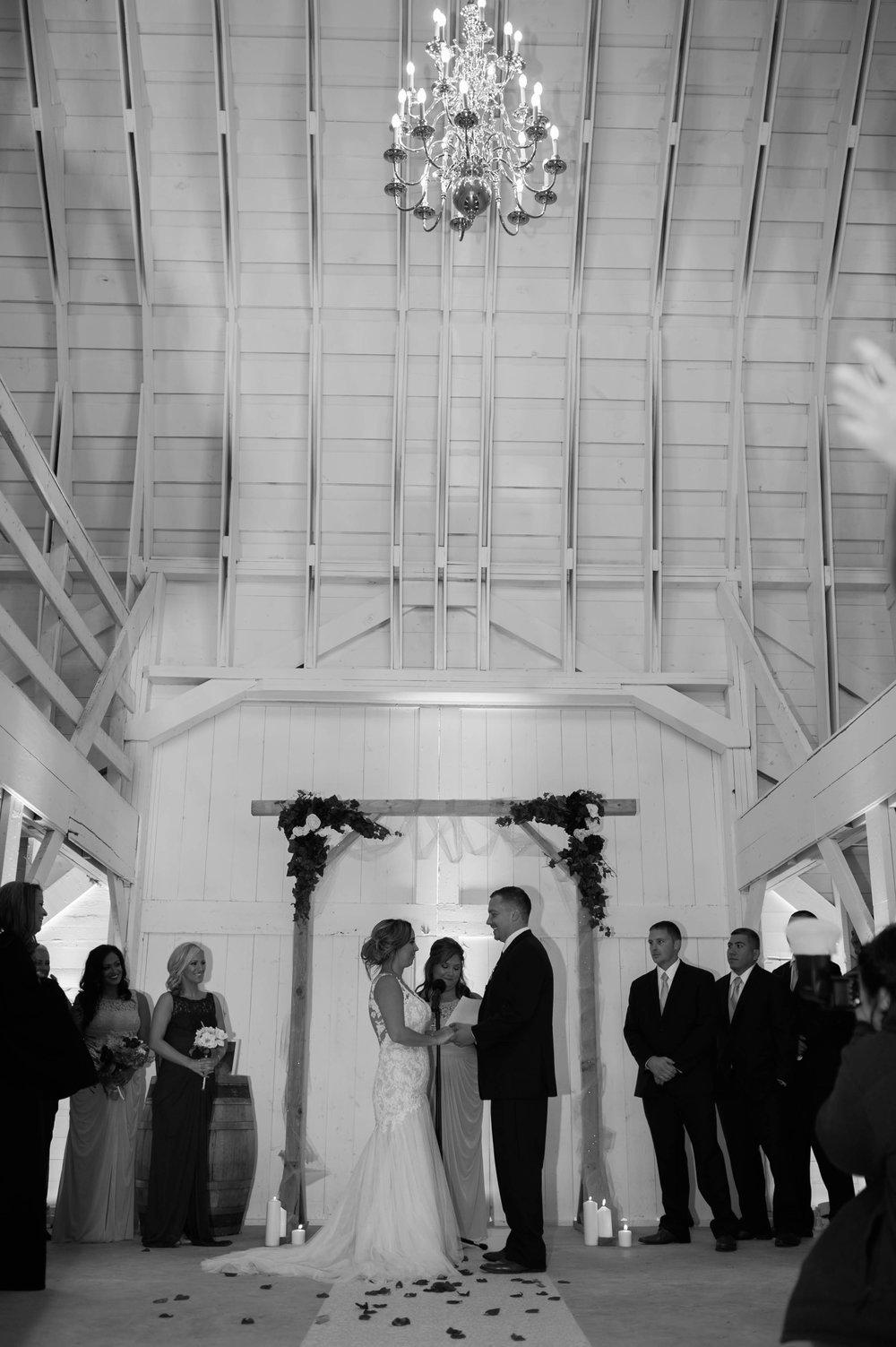 LLP Michigan Wedding Photographer 30.jpg