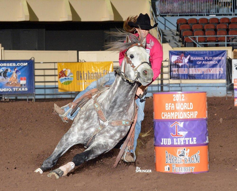 2013  WPRA World Finals Derby Reserve Champion  WPRA World Finals Second Round Derby Champion