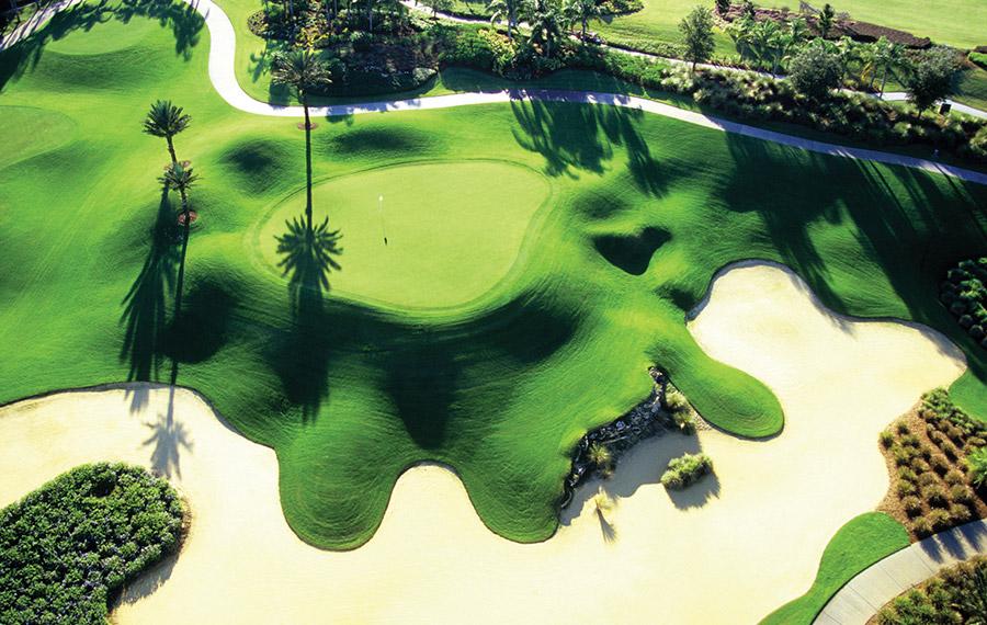 Reunion_Golf.jpg