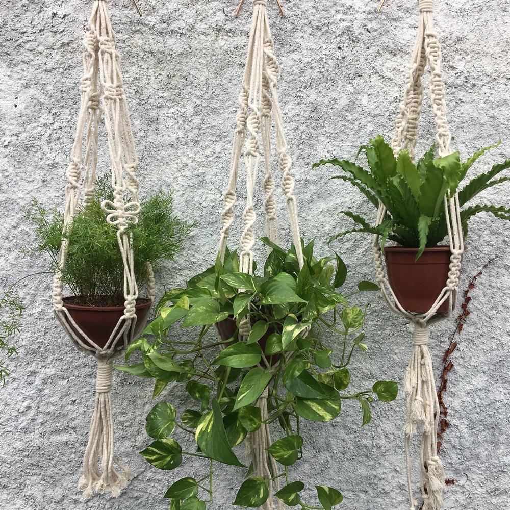 Hanger Plant Algodão.jpeg