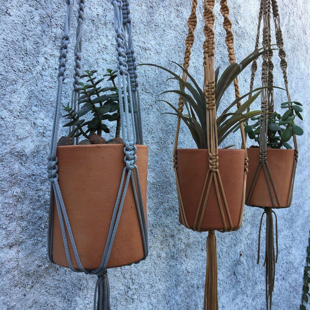 Hanger Plant  Polipropileno.jpeg