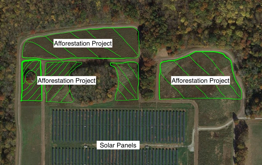 Aerial Image of Project Site, green marks the afforestation site boundaries.