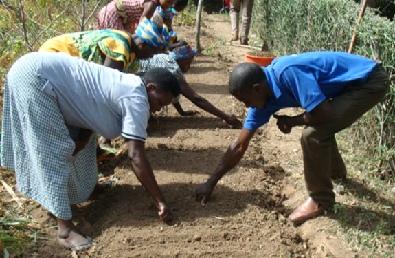 Project participants establish the first nursery.