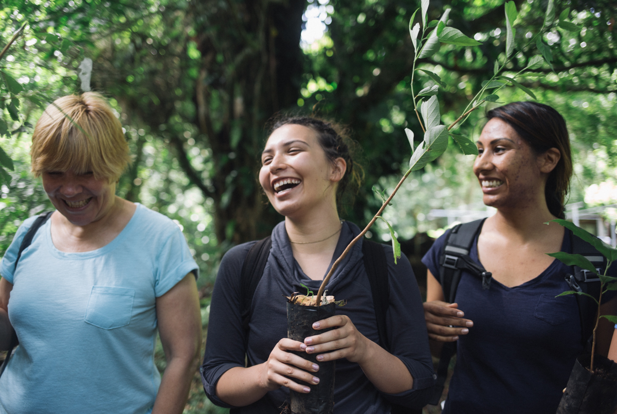 Uga Costa Rica Carbon Offset Program University Of Georgia Costa