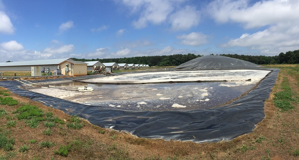 - Visit the project overview page for more details on Duke University's work at Loyd Ray Farms - a digester that uses swine waste to produce renewable energy on-site.