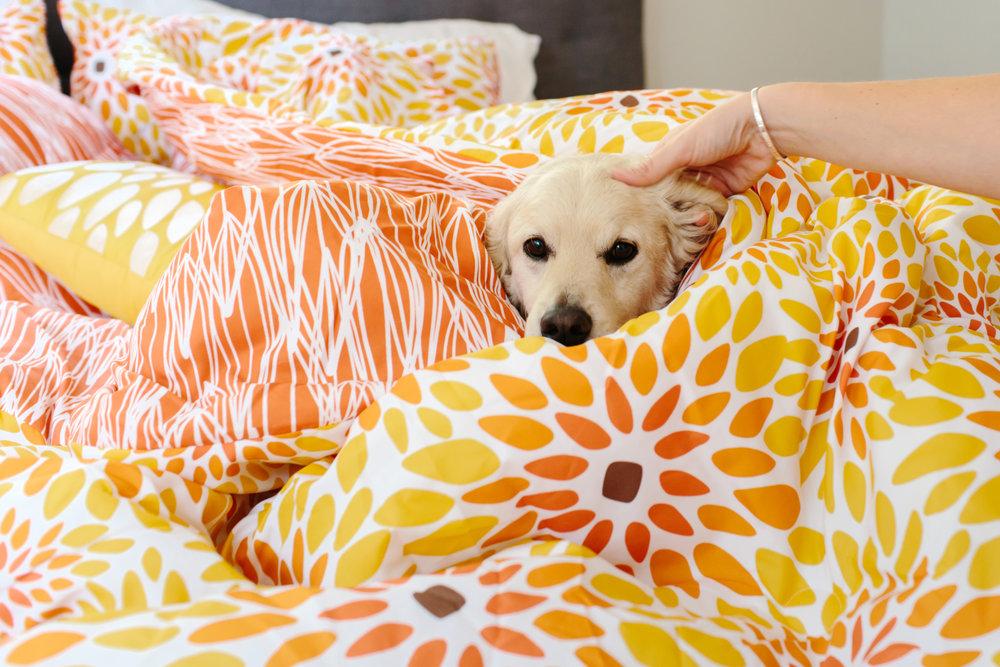VITA_Girasol_comforterset_dog.jpg