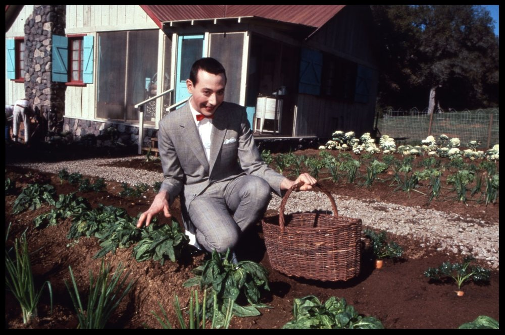 Paul Reubens as Pee-wee Herman c.1986 from original 35mm transparency