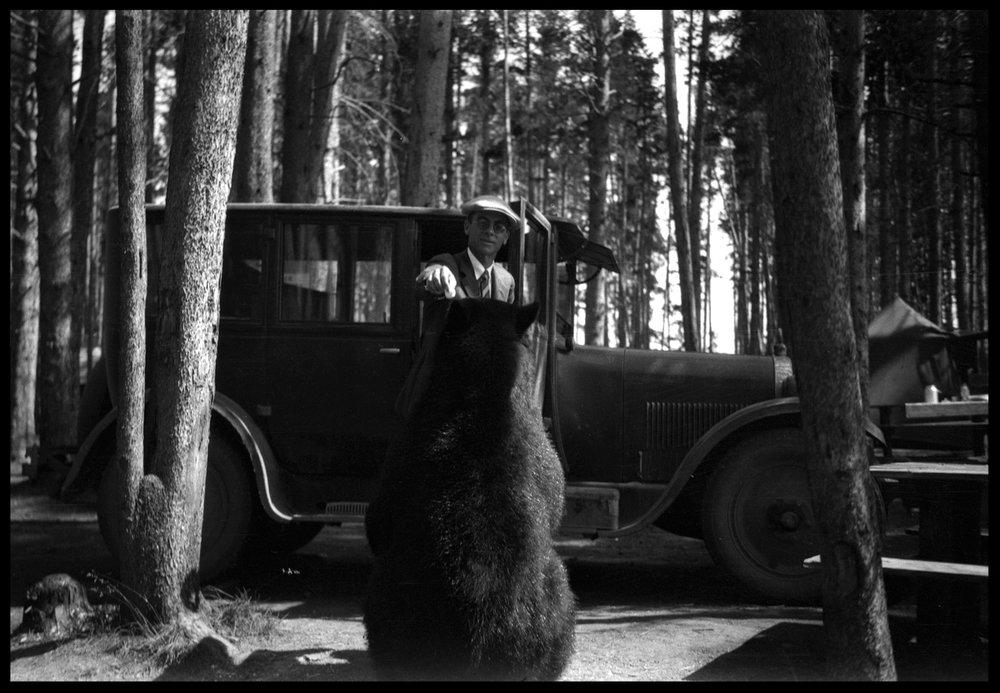 Bear&ManWebcopy.jpg