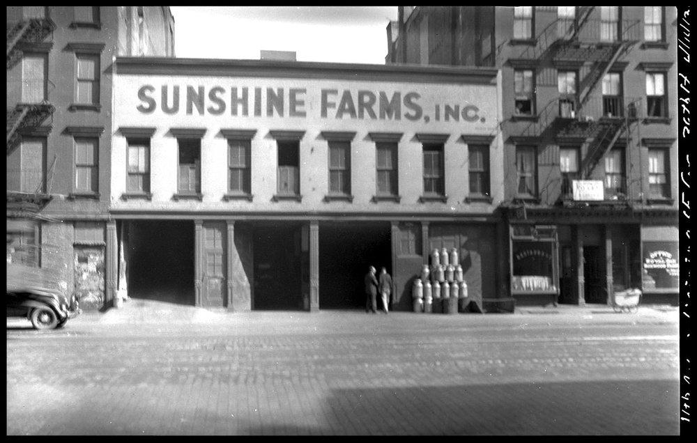 SunshineFarms31Webcopy.jpg