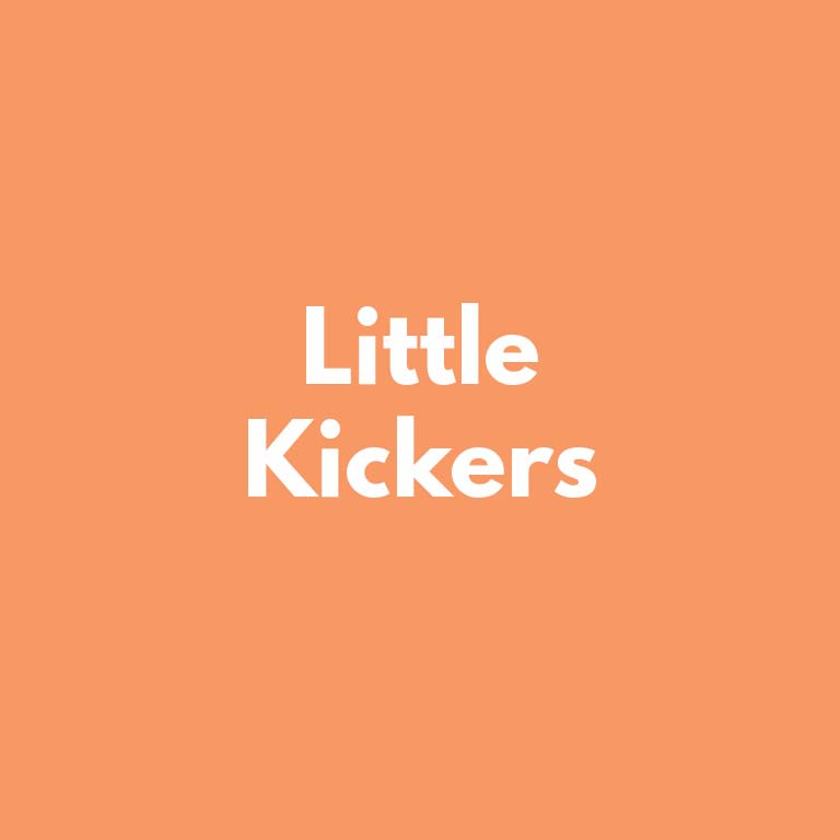 hysl_index_box_little_kickers.jpg