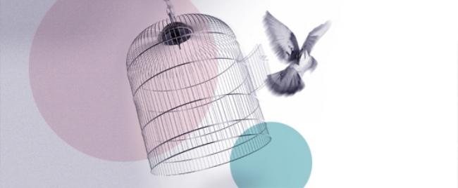 Bevrijd jezelf van perfectionisme en vlieg uit... zie ook www.bevrijdjezelf.be