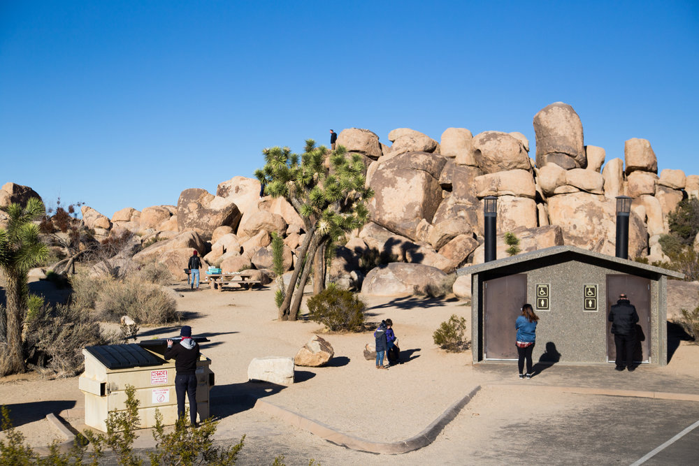Joshua Tree national park announces closure after trees destroyed amid shutdown - Photos for The GuardianJanuary 2019
