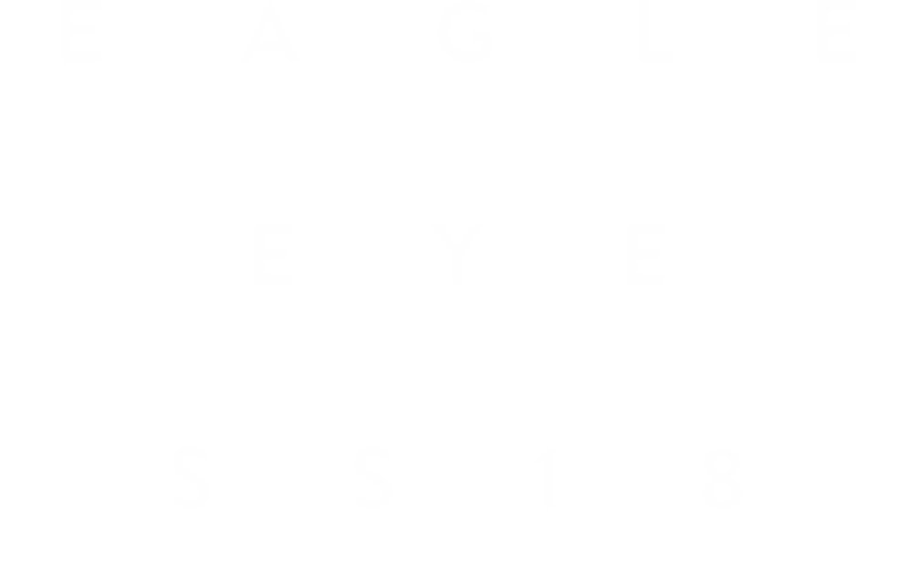 Letras_Website_EAGLE_EYE.png