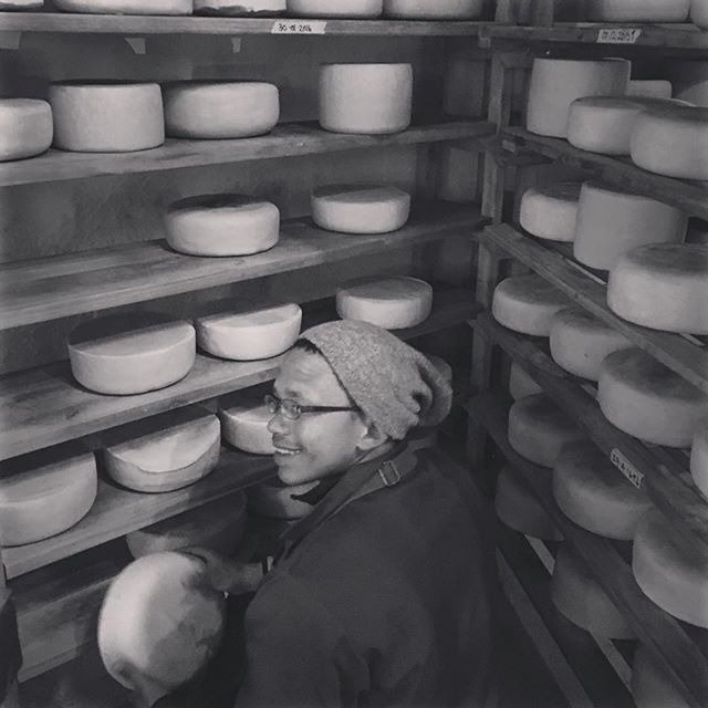 Auben Turning The Cheese