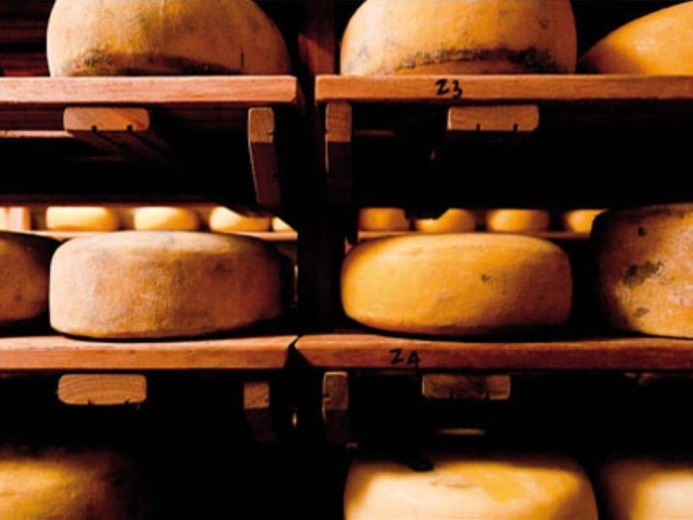 new cheese.jpg