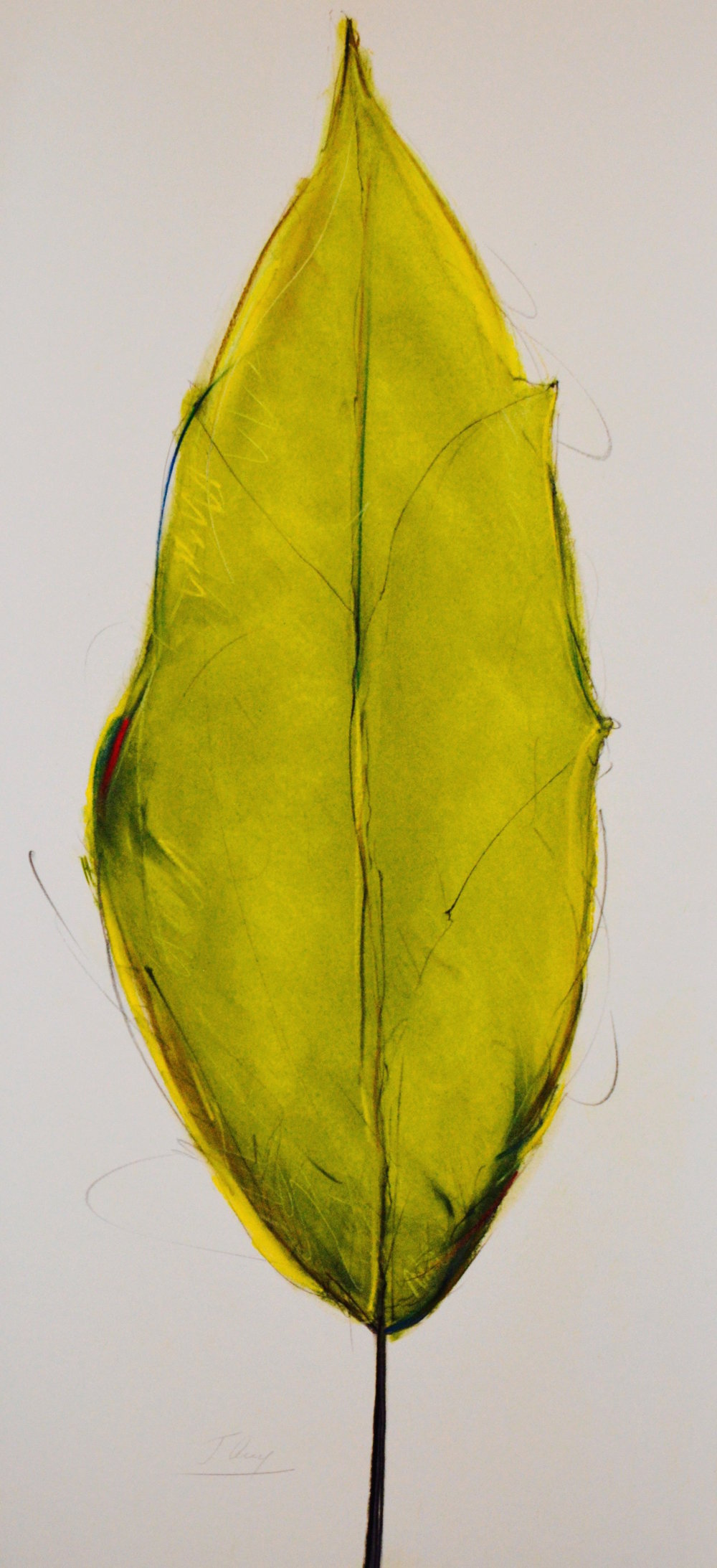 """Green Leaf"" No. 2, 2015"