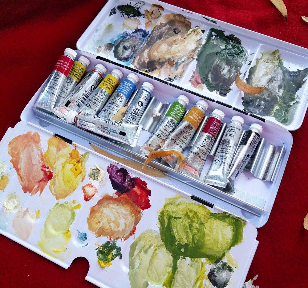 Artist watercolour plein air travel palette Winsor and Newton