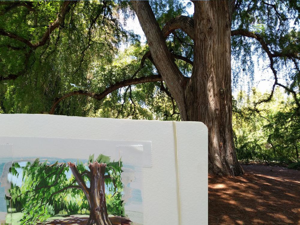 My Small paintings artist Amanda painting plein air tiny watercolour art at the Huntington Gardens, CA