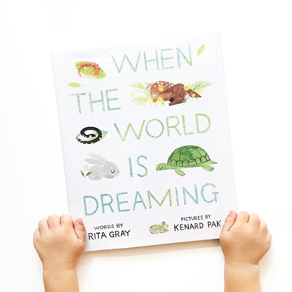 When the World Is Dreaming | Little Lit Book Series