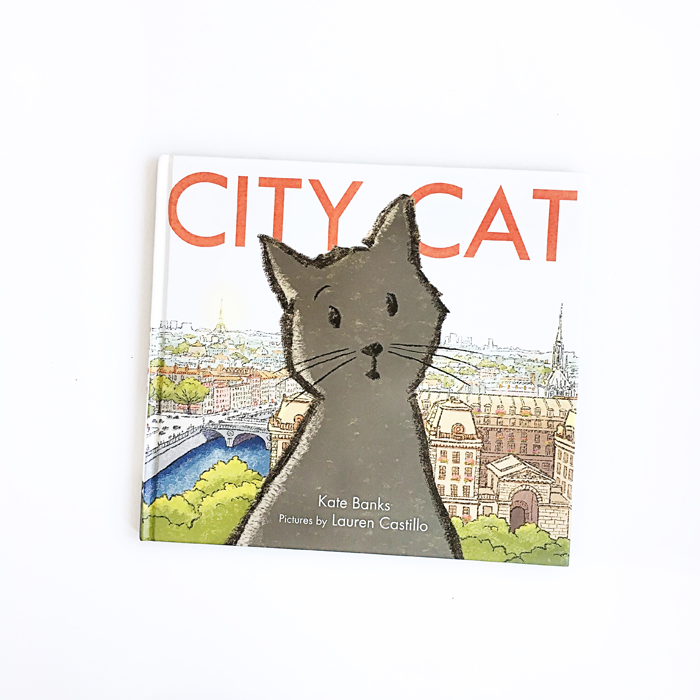 City Cat | Little Lit Book Series