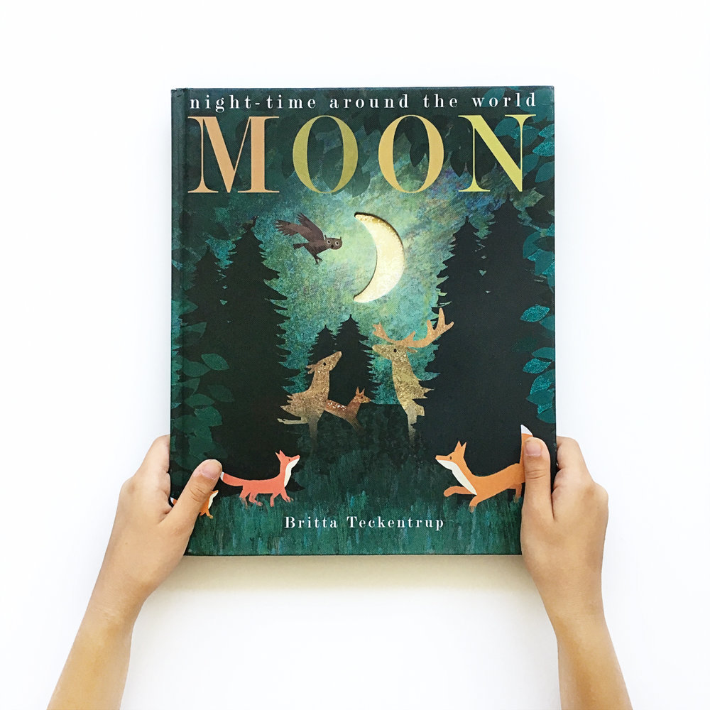 Moon: Night-Time Around the World | Little Lit Book Series