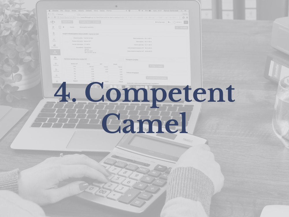 4. Competent Camel