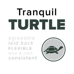 Turtle-Placard.png