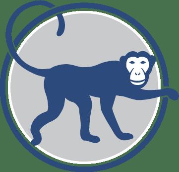Much-Loved Monkey