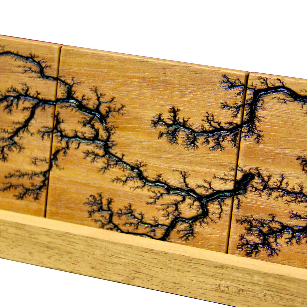 Lichtenberg Figures - Lightning Captured in Wood
