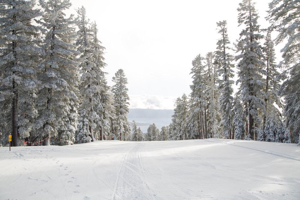 Snow 12.16 (2)-3.jpg