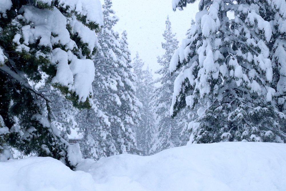 Taken on 1/11 at the Aspen Grove condominiums at Northstar California