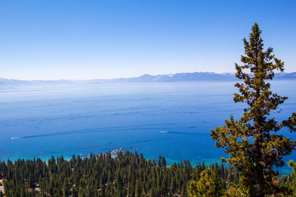 Stateline Lookout Tahoe.jpg
