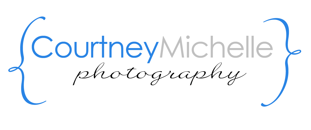 Courtney Michelle Photography - Chicago Newborn Photographer