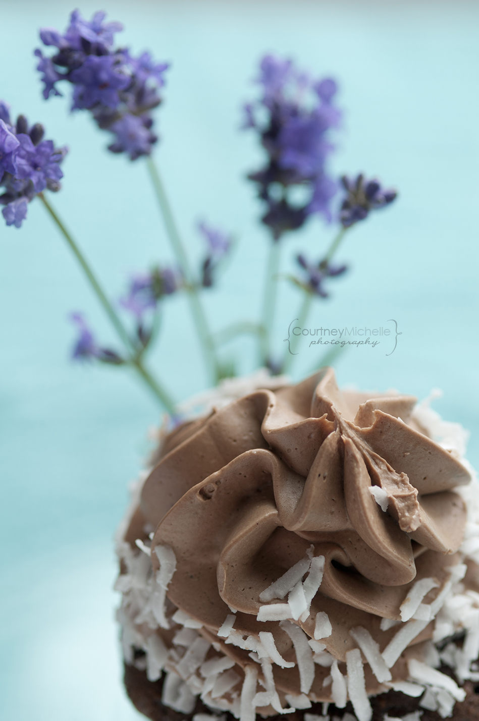 chocolate-cupcake-chicago-food-lifestyle-photography-by-courtney-laper.jpg