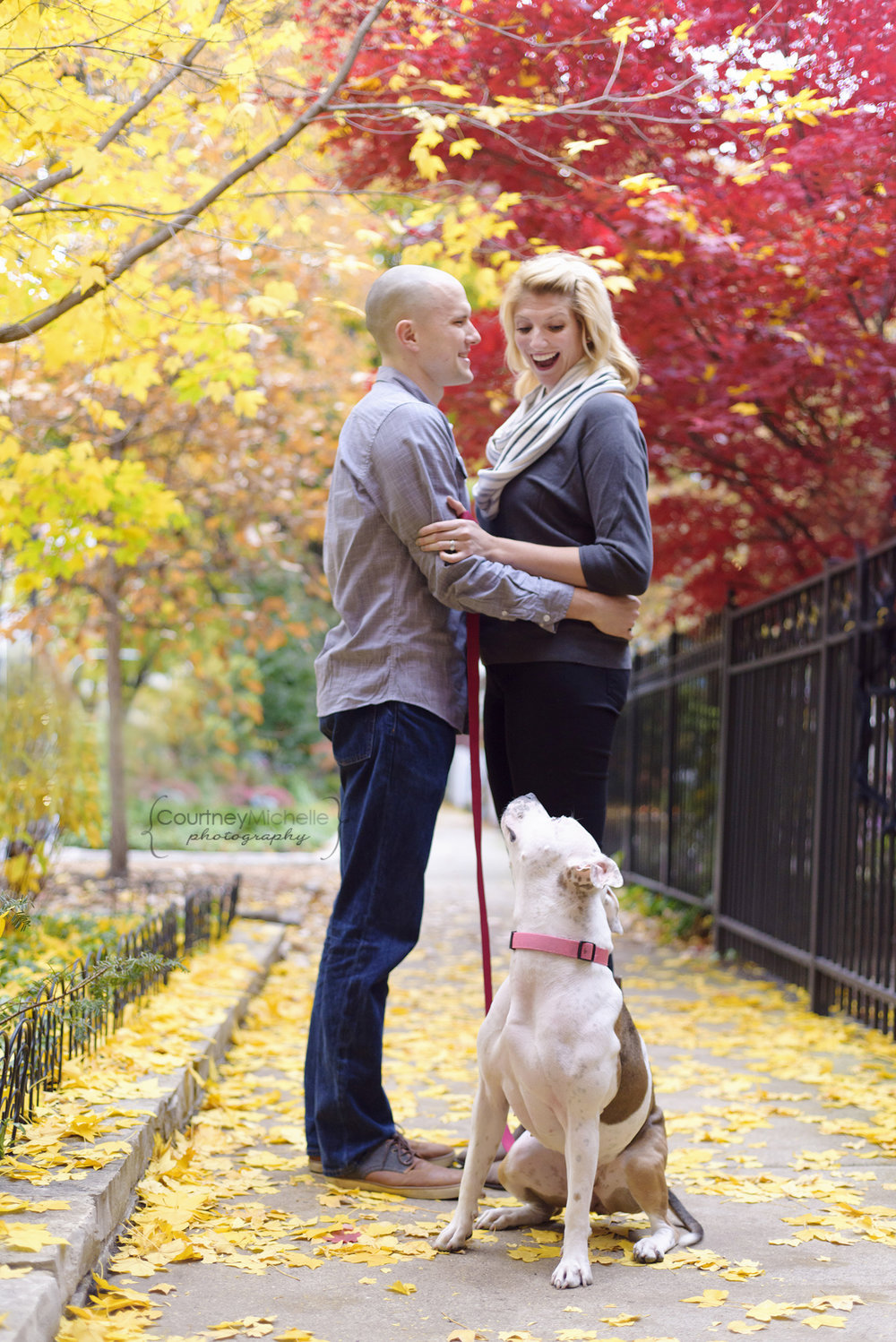 fall-portrait-couple-with-dog©COPYRIGHTCMP-howes-seske-5925.jpg