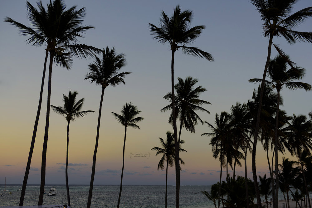 punta-cana-dominican-republic-jellyfish-wedding-beach-wedding-photography-courtney-laper©CopyrightCMP_2019-EmmaTito-0741.jpg